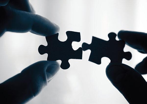 pipol-canada-partnership